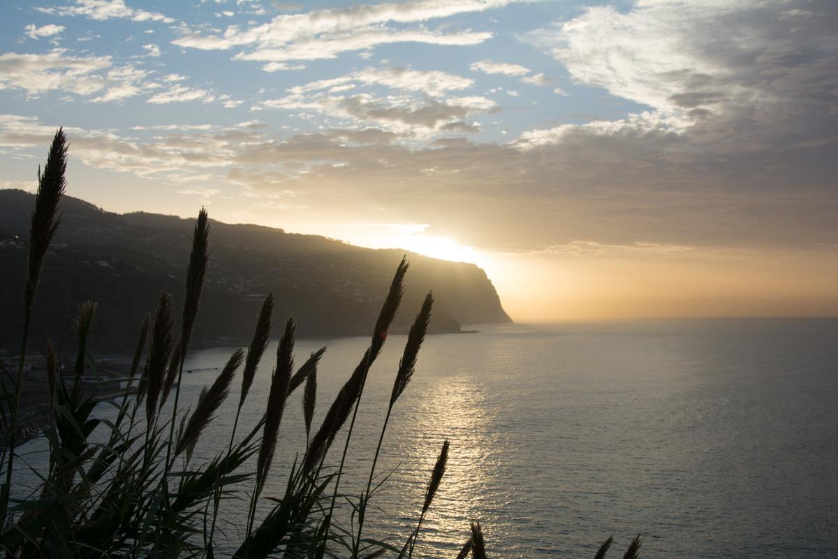 05-Madeira_2014-4952